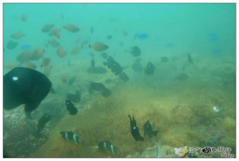 2013歐船長東海休閒漁業_101