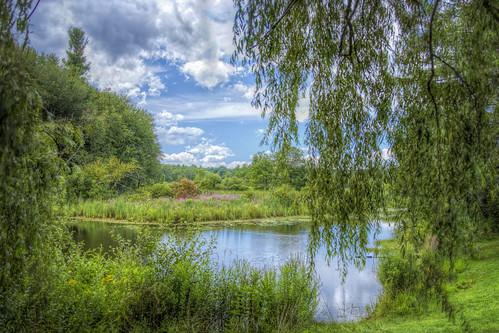 newhampshire orchard londonderry macksapples londonderrynewhampshire