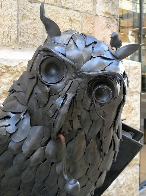 Some Owl (artist: Moshe Katz)