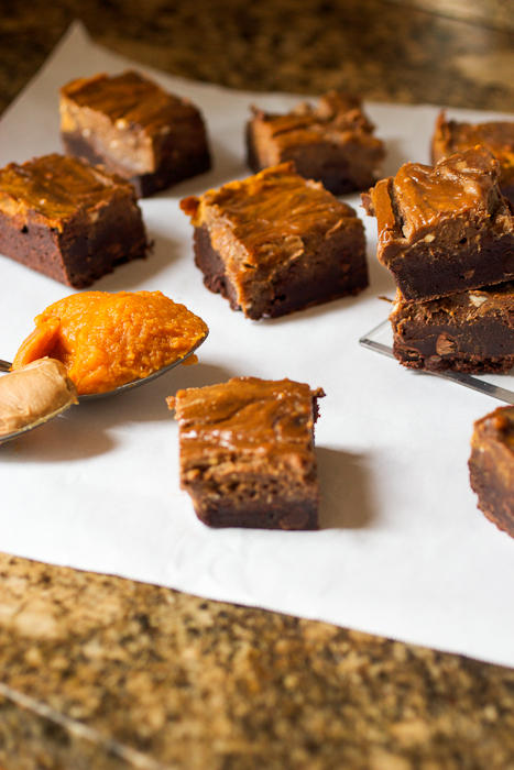 Pumpkin Biscoff Swirl Brownies