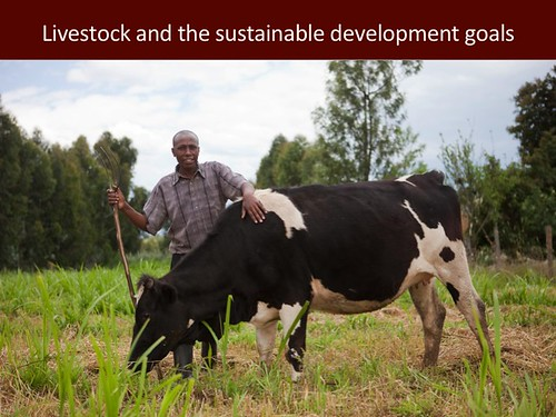 Livestock and the Sustainable Development Goals