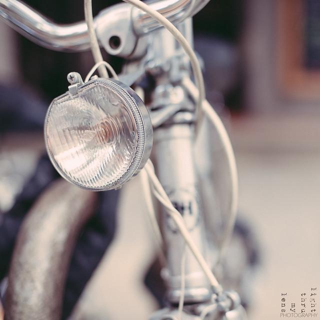 Bici al Born