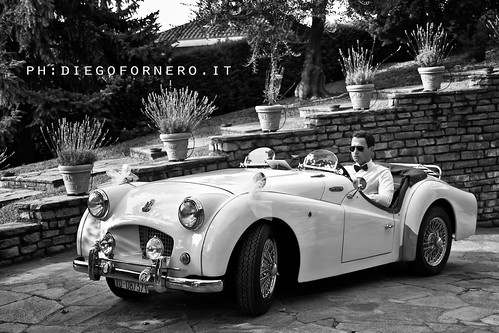 Wedding Triumph by diegofornero (destino2003)