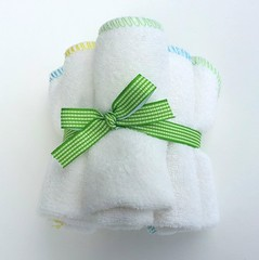 Spring Brights Bamboo Terry Wipes Set of 6