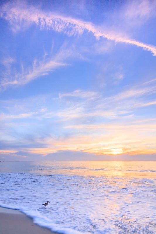 Strands Beach-0826