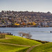 Bright morning on Lake Union by Chris Le Texier