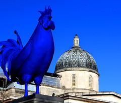 Plynth No 4 Trafalgar Square #London #dailyshoot