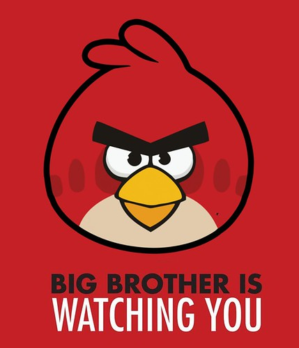 Big Brother - Angry Birds update now available for download. by Teacher Dude's BBQ