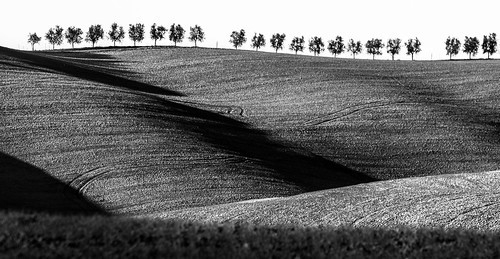 The beatiful tuscany rolling hills