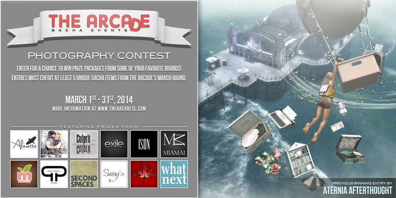 The Arcade Photography Contest - March, 2014