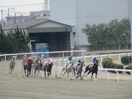 川崎競馬場 Kawasaki Racecourse