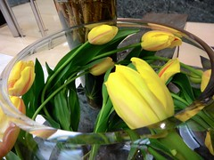 tulips in a round vase by Julie70