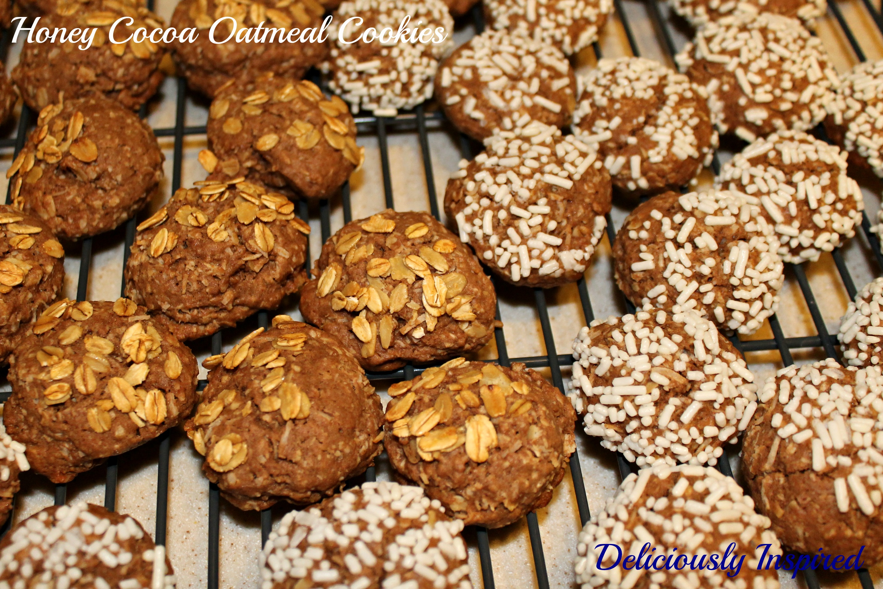Honey Cocoa Oatmeal Cookies - Cooling Rack