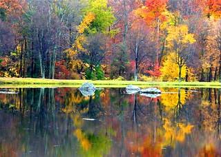 Beautiful Colors of 4 Seasons
