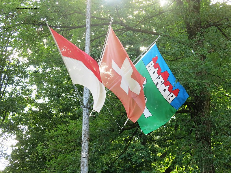 Kanton Solothurn, Switzerland, Feldbrunnen flags