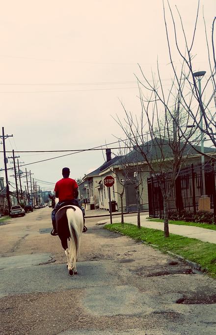 Horseback Transportation