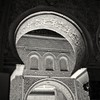 Seville's alcazar (Hasselblad 503, Kodak Tri-X 400) by alejandro lifschitz