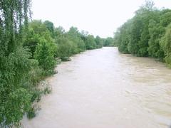 Trostberg-Hochwasser Alz-Juni 2013- von der Stadtbrücke aus gesehen