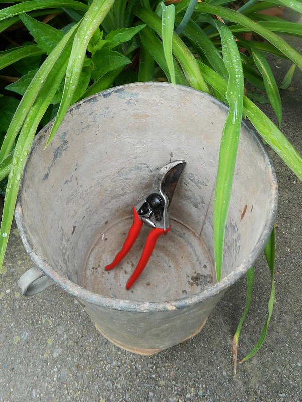 flower pail