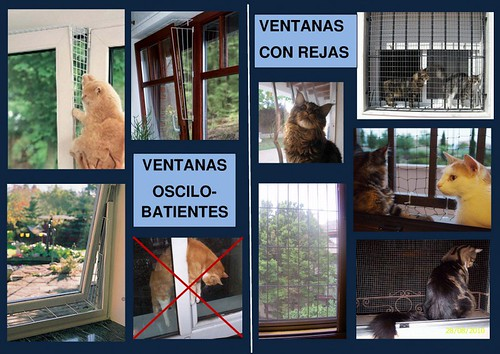 La importancia de las protecciones en ventanas balcones y for Como evitar los gatos en el jardin