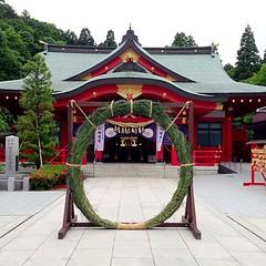 護国神社の茅の輪