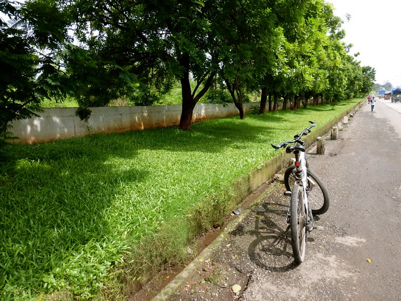 Ghansoli - Thane Belapur Road lined with green