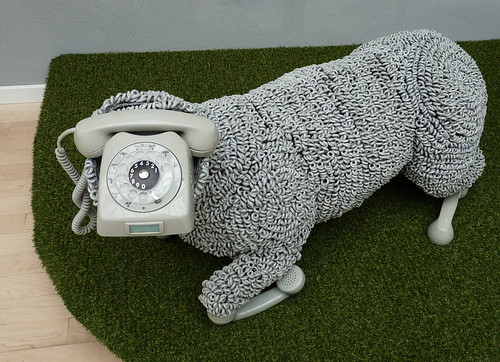 phone sheep