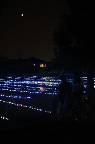 新川ほたる 2013