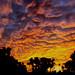 3rd Place - Novice - Ashley Goepfert - 6am Sunrise in AZ