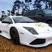 Small photo of Lamborghini Murcielago LP640 Versace Edition