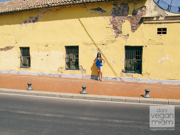 Valencia, Spain, Day 13