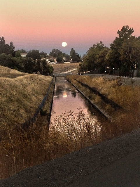 moon set on Tricia's commute