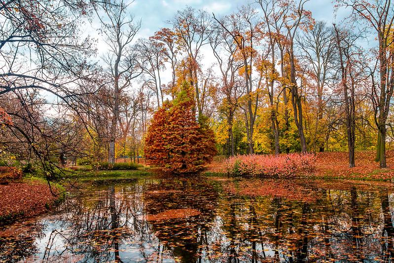 Autumn in Kalisz City Park, Poland