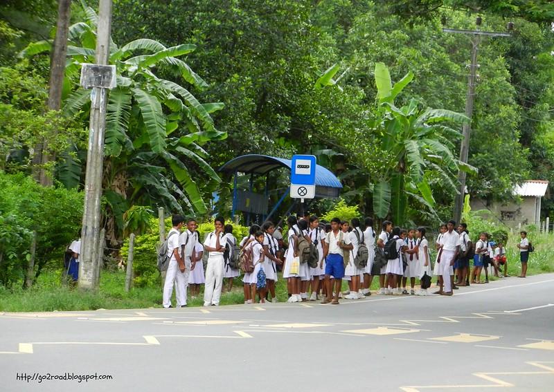 Школьники Шри Ланка