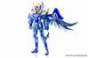 [Imagens] Saint Cloth Myth - Hyoga de Cisne Kamui 10th Anniversary Edition 11009078834_c8d7629873_t