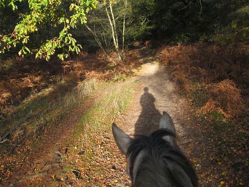 Sun behind us, trail ahead