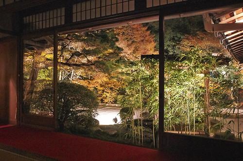 【写真】2013 紅葉 : 天授庵/2020-05-17/IMGP3725