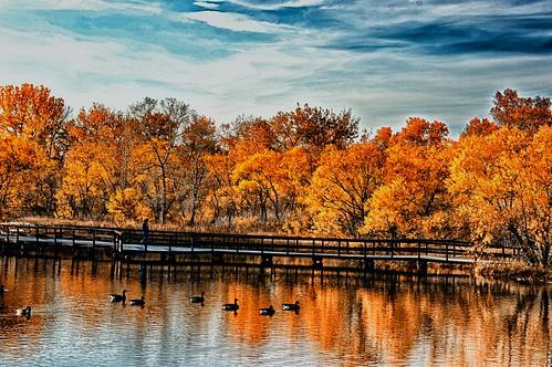 landscape colorado afsdxvrzoomnikkor18105mmf3556ged