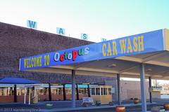 NMTXRoadtrip2013: Breaking Bad -- Octopus Car Wash