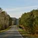 Wedowee, AL on 431 Traveling North