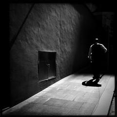 Light dreams & shadowed days