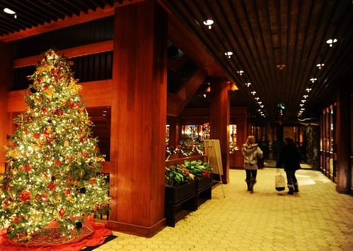 Utopian natural Christmas tree, shoppers talking in a hallway, wood walls and ceiling, hotel, downtown, Anchorage, Alaska, USA by Wonderlane
