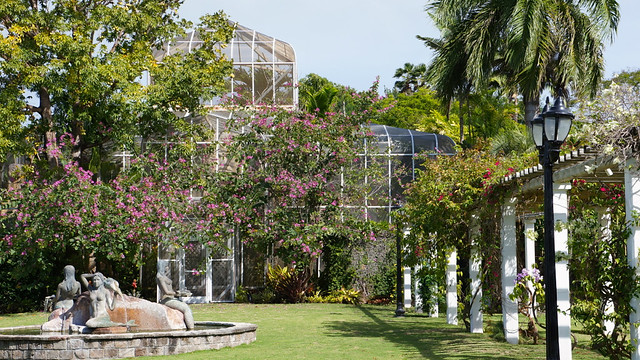 Honeymoon in Nevis Botanical Garden