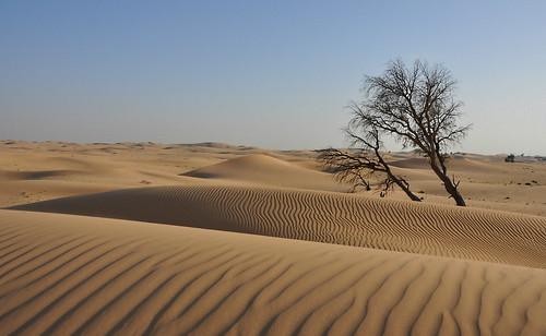eau dunes dune deserto emiratiarabiuniti alwathba mygearandme mygearandmepremium mygearandmebronze mygearandmesilver mygearandmegold mygearandmeplatinum mygearandmediamond ruby15 ruby20 rubyfrontpage
