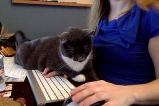 Crick is helping me blog
