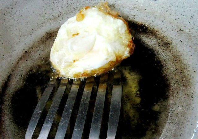 Fried egg 4