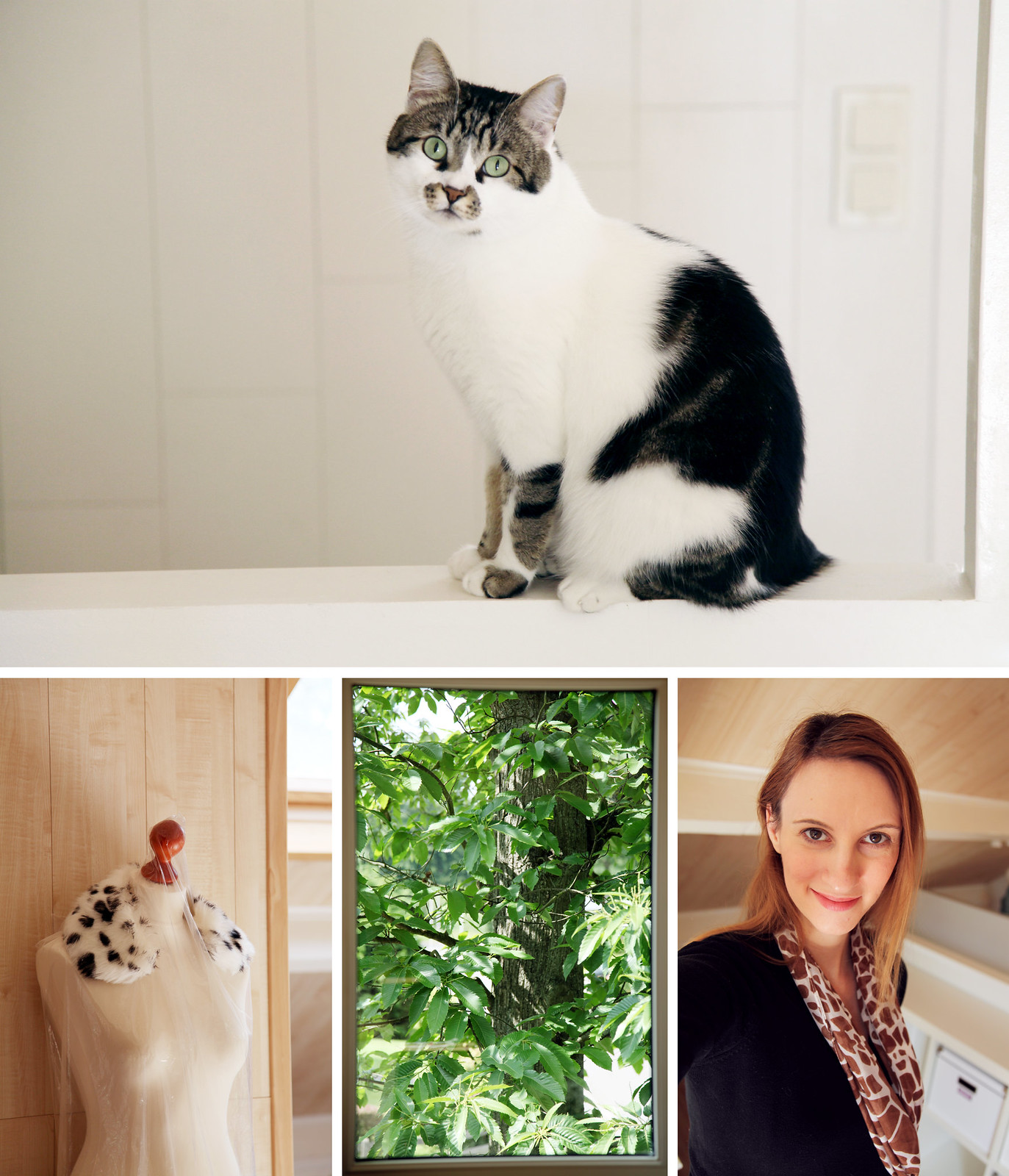 home cat tree interior summer mannequin portrait selfie collage