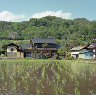 spring of traditional Japanese farm house 農家の春