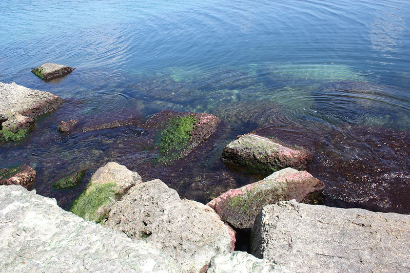 constanta black sea 05