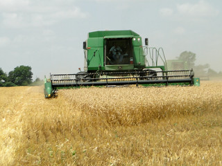 Picture showing a close up of a combine in a wheat field.